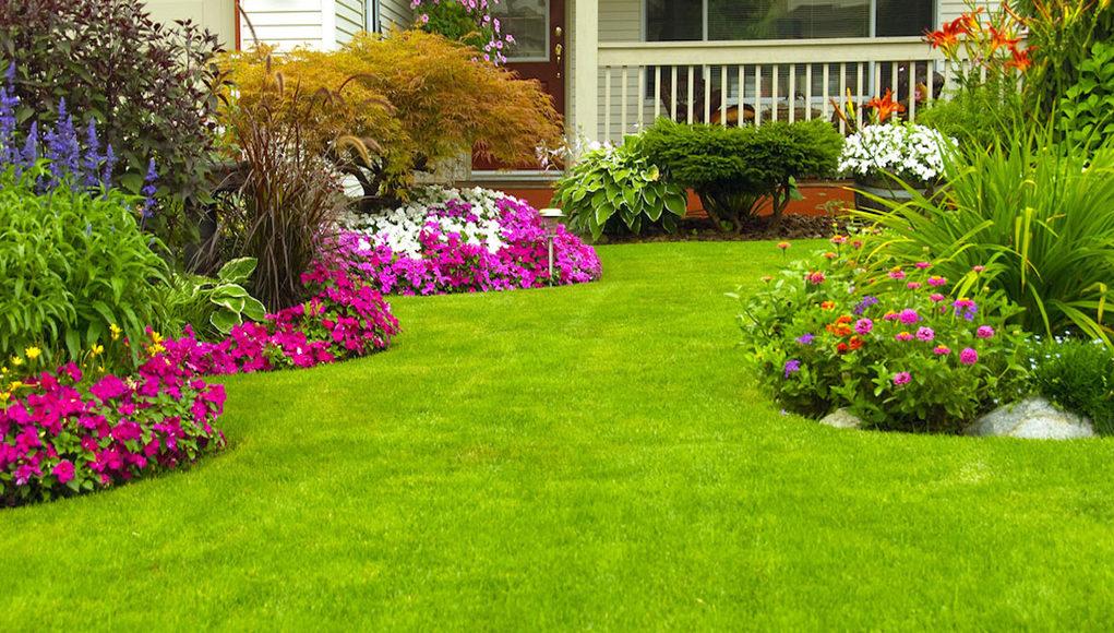 Весенняя уборка сада или участка