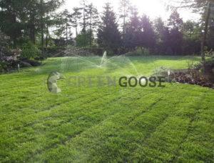Система автоматического полива газона в действии