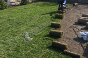 Обустройство рулонного газона