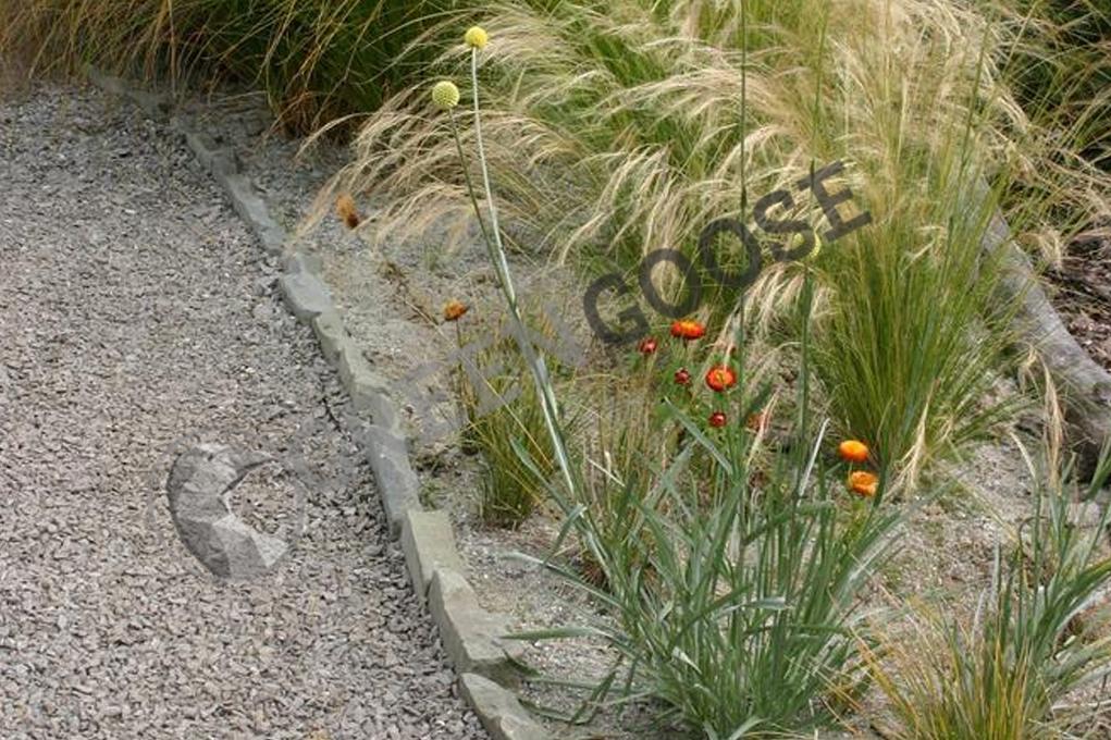 Рядом с серой гравийной дорожкой стоит посадить растения интересной формы, например, декоративные травы.