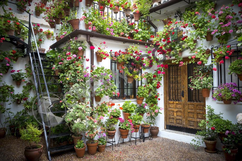 Если сад полностью вымощен и вы не можете сажать растения в землю, горшки остаются. Подвешенные к стене в большом количестве сделают пространство более дружелюбным.