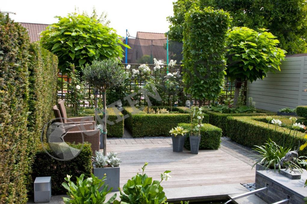 В этом небольшом саду используется множество геометрических форм, в том числе вертикальные. Они заставляют прицел фокусироваться не только на горизонтальных элементах.