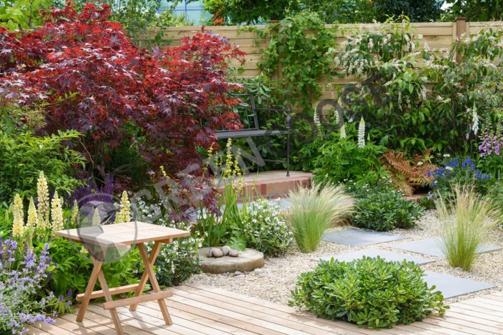 Если на клумбах в саду недостаточно места для растений, кустовые и карликовые виды растений можно высаживать индивидуально в тротуар. Это придаст саду глубины.