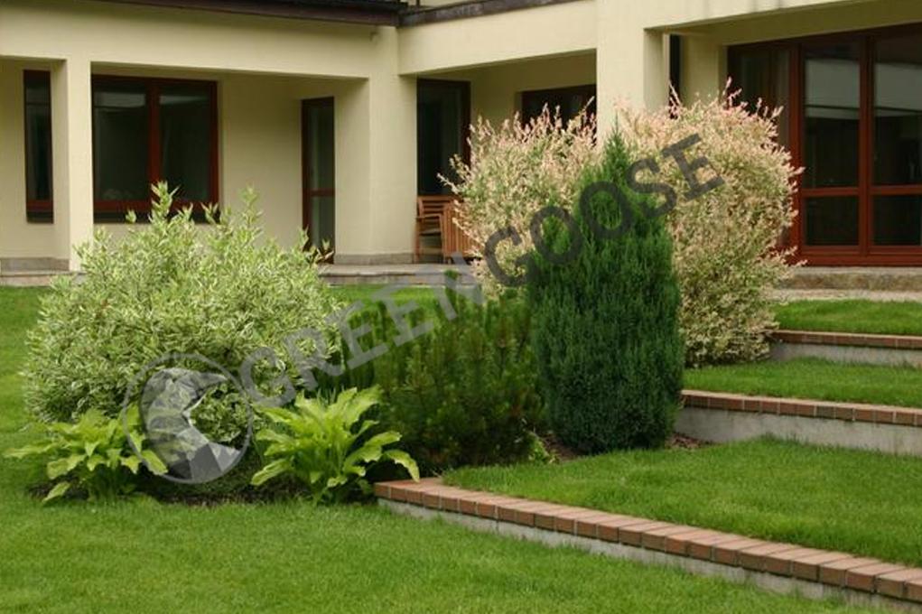 Широкие травяные террасы создаются за счет разделения обширного склона низкими стенами. Группа эффектных растений подчеркивает декоративность входа в сад.